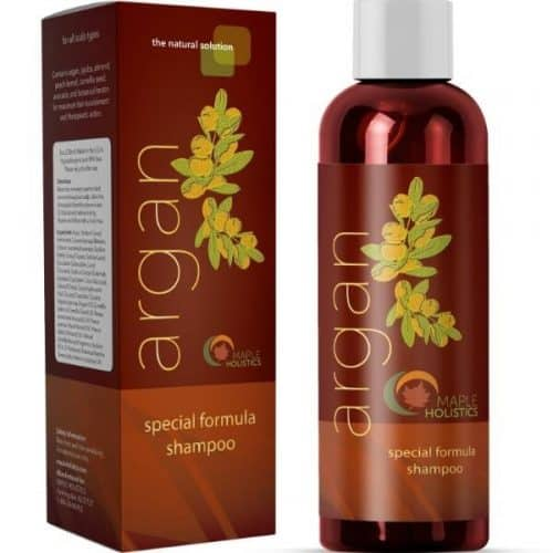 Maple Holistics Argan Oil Shampoo and Hair Conditioner – Best Cleansing Organic Shampoo